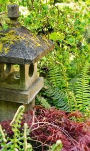 Hidden lantern in the Japanese garden