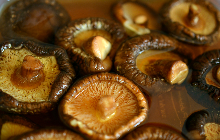 Soaking shiitake